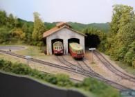 rail-train-miniature-reseau-Ho-RM25-modélisme-campagne (23)