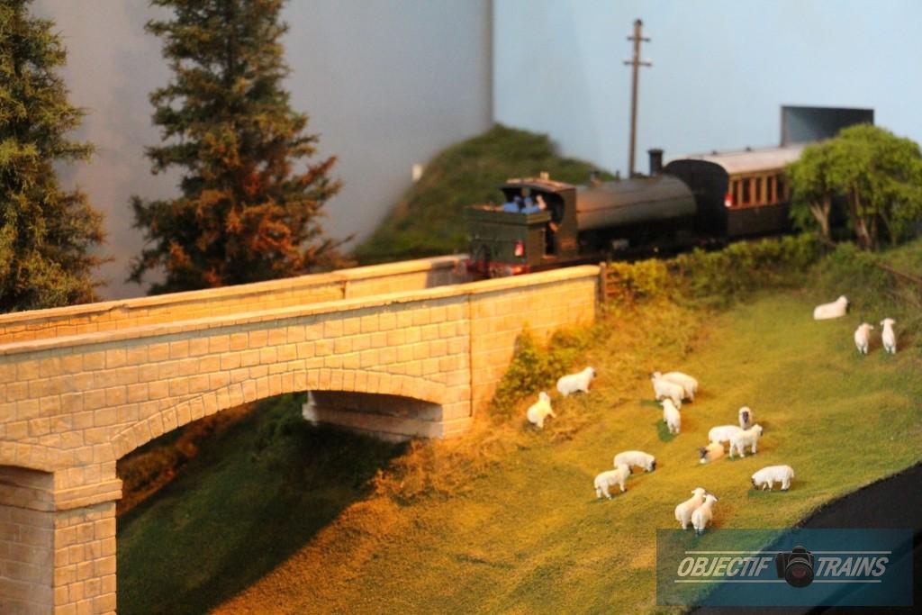 Loco vapeur et les moutons