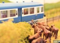 train-miniature-O- réseau- cantal- (8)
