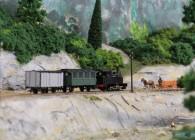 vapeur-aude-tramway-voie-metrique-réseau-train-miniature-Hom (23)