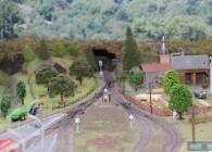 gare-lioran-reseau-N-jean bernard lavigne-train- (10)