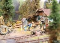 la mocanita-O-réseau-roumanie-train-miniature-campagne (12)