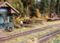la mocanita-O-réseau-roumanie-train-miniature-campagne (14)
