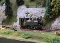 la mocanita-O-réseau-roumanie-train-miniature-campagne (2)