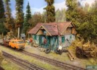la mocanita-O-réseau-roumanie-train-miniature-campagne (9)