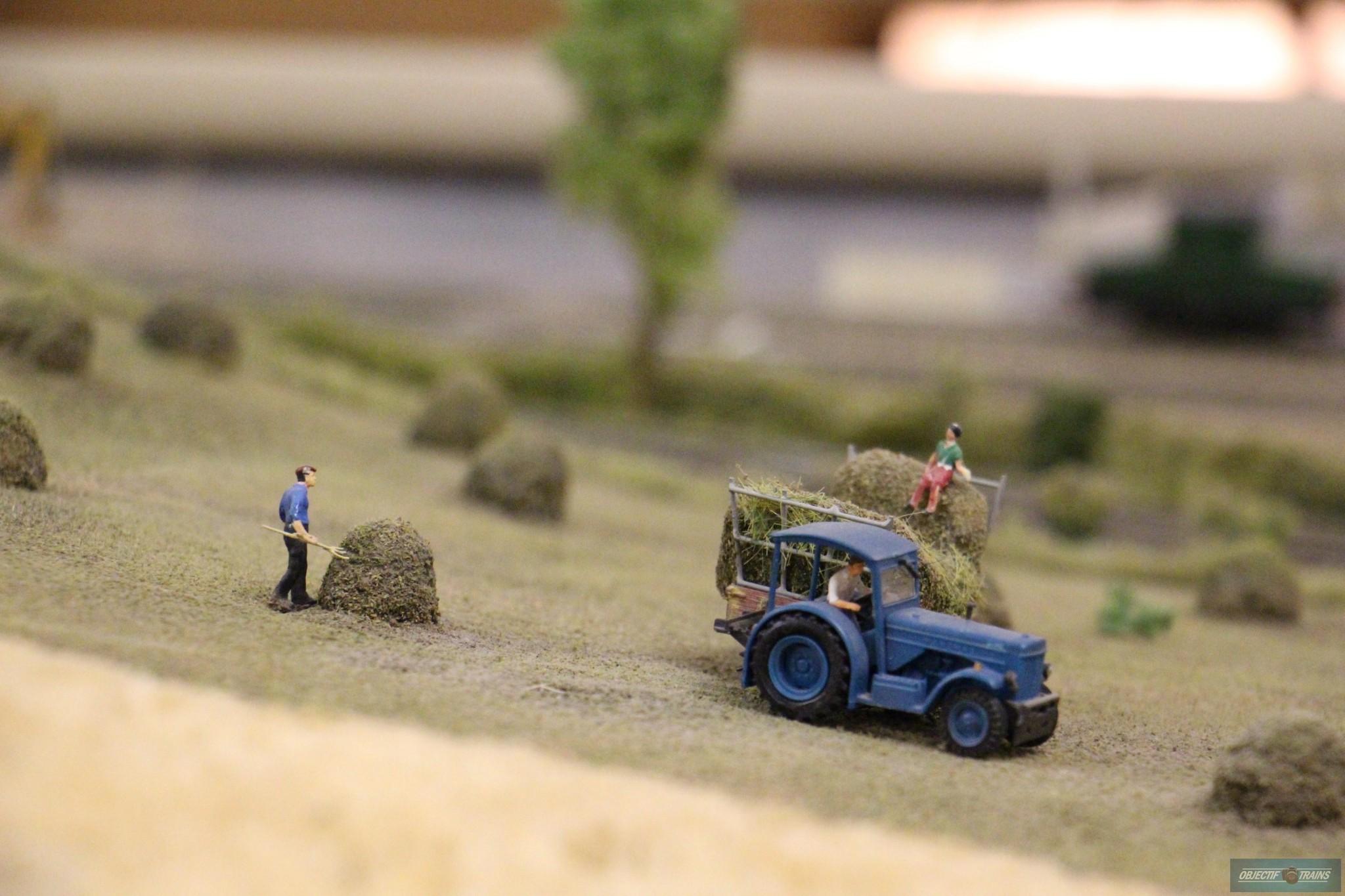 reseau-rail miniature castrais-castres-reseau-Ho (33)