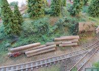 raoul-lagrume-hoe-train-miniature-objectiftrains-reseau-18