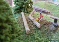 raoul-lagrume-hoe-train-miniature-objectiftrains-reseau-20